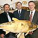 Der Fischereiverein Fürth feiert in diesem Jahr sein 125-jähriges Bestehen. Er übernimmt seit jeher wichtige gesellschaftliche Aufgaben.