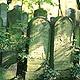 Die Sanierung der einsturzgefährdeten Halle des Israelitischen Friedhofs aus dem Jahr 1902 kann beginnen.