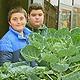 Der Ausbau der Schulgärten in Fürth geht weiter: Seit dem Sommer wird auch im Pausenhof der Otto-Seeling-Schule fleißig gepflanzt.