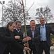 Die Infrastrukturmaßnahmen im Sportpark Ronhof schreiten voran. Heute pflanzten Stadt- und Vereinsspitze symbolisch einen Baum.