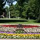 Die Mitarbeiter des Grünflächenamts haben fast 17000 Blumen in der Form des Symbols der evangelisch-lutherischen Kirche gepflanzt.