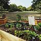 Mit einem weiteren Urban-Gardening-Projekt ist ein weiteres nachhaltiges Projekt umgesetzt worden. Doch für die Nutzung gibt es klare Regeln.