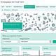 Das neue Internetangebot bietet einen umfassenden Überblick über die vielfältigen Bildungsangebote in Fürth.