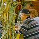 Eines wissen Besucher der Michaelis-Kirchweih ganz besonders zu schätzen: Bierzelte sucht man auf dem Gelände vergeblich.
