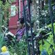 Der Outdoor-Leseabend im Rahmen des Literaturfestivals Lesen! (light) lädt zur Lektüre allein oder zu zweit im idyllischen Ambiente des Bogenhofs.