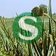 Der Bund Naturschutz, Vertreter der betroffenen Landwirte und des Aktionsbündnisses haben gegen die Planung der DB klar Stellung bezogen.