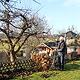Im Gegensatz zu anderen Städten bleiben in Fürth städtische Flächen, die als Gartenkolonien genutzt werden, als Baugrund tabu.