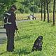 Das Grünflächenamt prüft, an welchen Standorten Hundekot-Tütenspender angebracht werden sollen und erbittet Vorschläge.