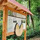 Wald und Wild mit all seinen Facetten erleben können Besucherinnen und Besucher nun auf dem neuen umweltpädagogischen Lehrpfad im Stadtwald.