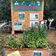 Der neue Trend: Gemeinsam gärtnern und die Stadt ein bisschen grüner machen. Nicht nur schön anzusehen, da freuen sich auch die Bienen!