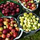 Leckeren Apfelsaft gibt es an der Gustav-Schickedanz-Mittelschule frisch von der schuleigenen Streuobstwiese.