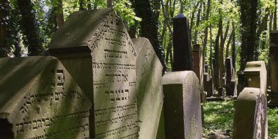Der alte jüdische Friedhof, der 1607 angelegt wurde, ist das wichtigste erhaltene Zeugnis der langen und bedeutenden jüdischen Geschichte Fürths.