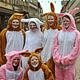 Am Samstag, 8. April, kommen Osterhasen in die Innen- und Altstadt und verteilen von 12 bis 16 Uhr faire Süßigkeiten.